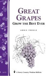 Booklet - Great Grapes